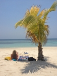 Woman and Palm Tree