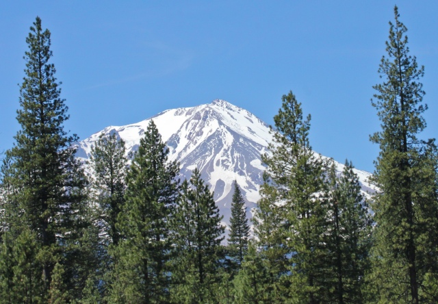 mount shasta in early june