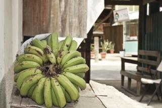 Honduran Fruit