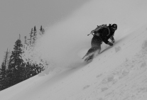 Coming out of the Whiteroom