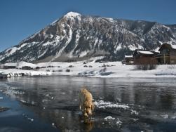 ...on thin ice.