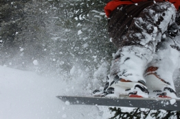 skis-in-their-element