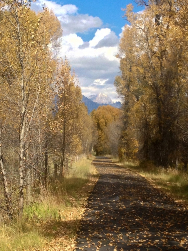 jackson hole bike path autumn