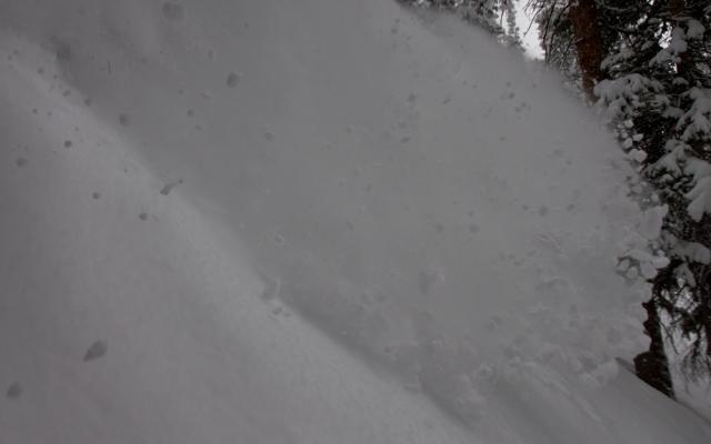 snodgrass-4-17-powder